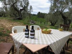 Identitat Extra Virgin Olive Oil
