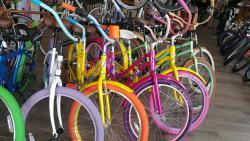 Boca Bike Shop Rentals