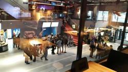 Die Cinema 8 AG