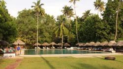 La superbe piscine écologique