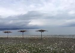 Pitsunda Beach