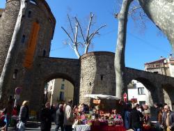 Saturday Street Market
