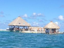Marinarium Excursions - Reef Explorer