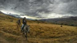 Backcountry Saddle Expeditions