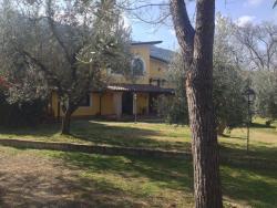 Azienda Agricola Il Bagolaro