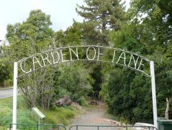Garden of Tane