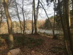 Netter Park