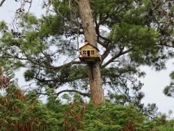 Naturland Forest Resort