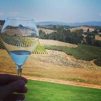 Cape Food & Wine Tours