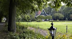 De Olmenhorst