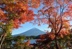 Fuji Lake Kawaguchi Koyo Festival