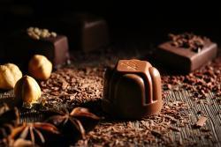 Ambiance chocolats Puyricard