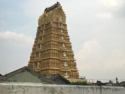 Royal Mysore Walks
