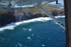 Maui Aviators
