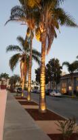 Pacific Crest Santa Barbara