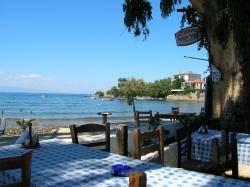 Stefanos Fish Taverna