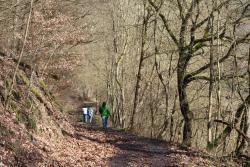 Nahe-Felsen-Weg