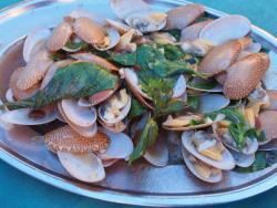 Saeng Thai Seafood