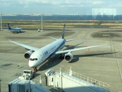 Miki Kiitos - Tokyo International Airport (Haneda) Tour