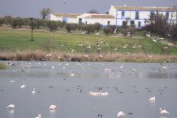 Laguna Navaseca