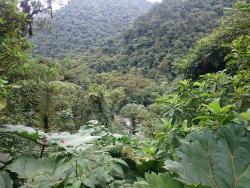 Parque Nacional Tapantí Macizo de la Muerte