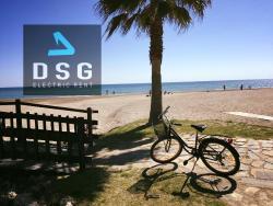 Dsg Electric Rent