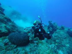 Deepist Dalış ve Doğa Sporları