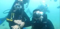 Ilha Divers