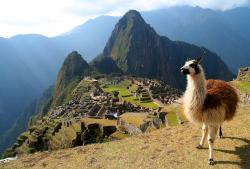Intense Peru