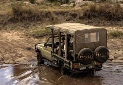 Adventure in the Serengeti!