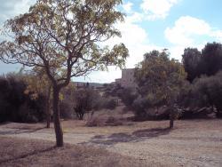 Parc du Chateau de Montplaisir