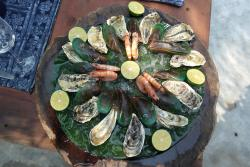 """seafood platter : 12 """" fines de claire"""" oysters, 12 mussels, 6 steamed shrimps"""