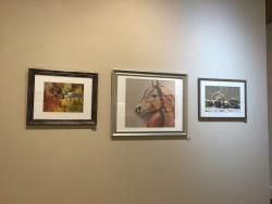 Trumbull Art Gallery
