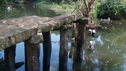 Gal Palama (Stone Bridge) over Malwathu Oya