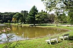 Parque dos Pinheiros