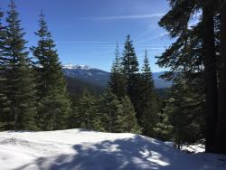Tahoe Mountain Guides- Day Tours