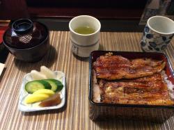 Torikatsuro