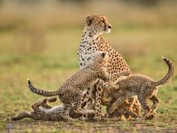 SED Adventures Tours & Safaris - Day Tours