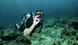Blue Planet Divers
