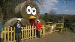 Godstone Farm & Playbarn