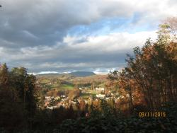 Leech Forest (Leechwald)
