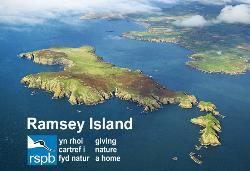 Ramsey Island Nature Reserve RSPB