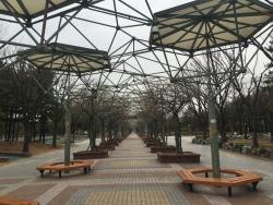 Bucheon Jungang Park