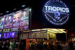 Disco Tropics