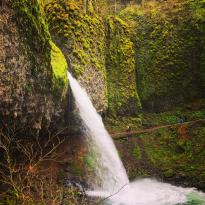 Horsetail Falls- Columbia River Gorge