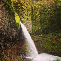 马尾瀑布-哥伦比亚河谷