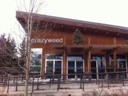 Crazyweed Kitchen
