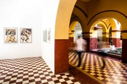 Casa Museo Arte y Cultura la Presentacion