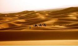 Morocco Desert Adventures