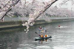 東京グレートカヤッキングツアー